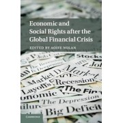 Economic and Social Rights after the Global Financial Crisis by Aoife Nolan