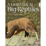 Bug Club Non-Fiction Blue (KS1) B/1b A Little Look of Reptiles 6-Pack by Pauline Cartwright