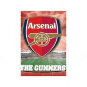 Plakát Arsenal FC 3D