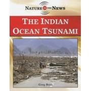 The Indian Ocean Tsunami by Greg Roza
