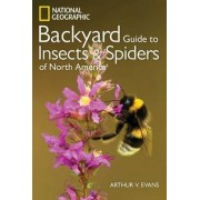 National Geographic Backyard Guide To Insects And Spiders Of North America by Arthur V. Evans