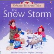 Snow Storm by Heather Amery