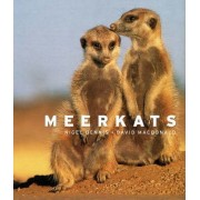 Meerkats by Nigel Dennis