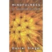 Mindfulness si neurobiologie - Daniel Siegel