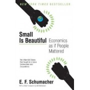 Small Is Beautiful by E F Schumacher