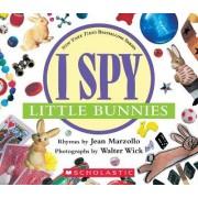 I Spy Little Bunnies by Jean Marzollo
