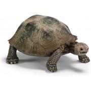 Schleich Schildpad reuzenschildpad 14601