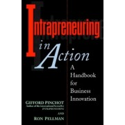 Intrapreneuring in Action: A Handbook for Business Innovation by Gifford Pinchot