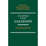 Commentary on the Epistle to the Galatians by James D. G. Dunn