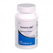 Turmeric 500 100 Cápsulas Prothera