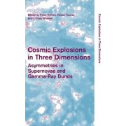 Cosmic Explosions in Three Dimensions by Peter H