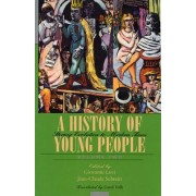 A History of Young People in the West: Stormy Evolution to Modern Times v. 2 by Giovanni Levi
