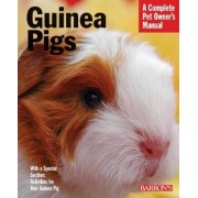 Guinea Pigs by Immanuel Birmelin