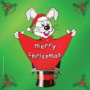 "Merry Christmas Silk 24"""