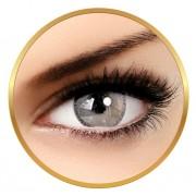 Adore Adore Bi Tone Grey - lentile de contact colorate gri trimestriale - 90 purtari (2 lentile/cutie)