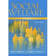 Social Welfare by Louise C. Johnson
