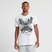 Adidas Graphic Tee 1