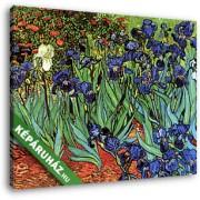 Vincent Van Gogh: Íriszek (30x25 cm, Vászonkép )