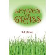Walt Whitman's Leaves of Grass by Walt Whitman