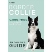 Border Collie by Carol Price