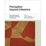 Perception Beyond Inference by Liliana Albertazzi