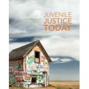 Juvenile Justice Today by Gennaro F. Vito