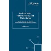 Penitentiaries, Reformatories, and Chain Gangs by M. Colvin
