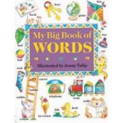 My Big Book of Words by Isobel Clark