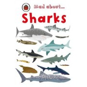 Mad About Sharks