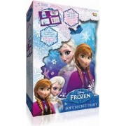 Frozen tajni dnevnik