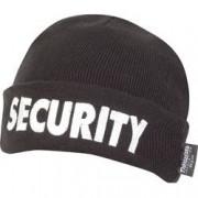 CACIULA VIPER SECURITY
