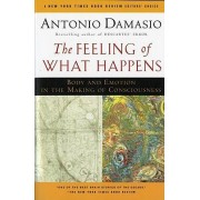 The Feeling of What Happens by Professor of Neurology Antonio R Damasio