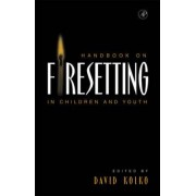 Handbook on Firesetting in Children and Youth by David J. Kolko