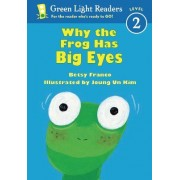 Why the Frog Has Big Eyes by Betsy Franco