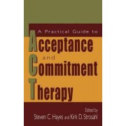 A Practical Guide to Acceptance and Commitment Therapy by Stephen C. Hayes