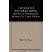 Beginning and Intermediate Algebra by Paula McKenna