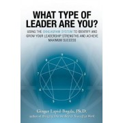 What Type of Leader are You? by Ginger Lapid-Bogda