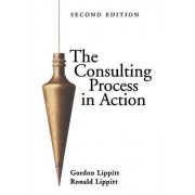 The Consulting Process in Action by Gordon L. Lippitt