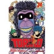 Toriko, Vol. 34 by Mitsutoshi Shimabukuro