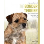 Border Terrier Best of Breed by Betty Judge