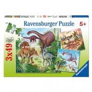 Puzzle dinozauri, 3x49 piese, RAVENSBURGER
