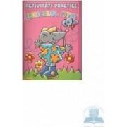 Activitati practice - Soricelul istet roz