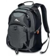 High Sierra Neuro Backpack(Grey, Black)