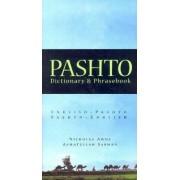 Pashto-English/English-Pashto Dictionary and Phrasebook by Nicholas Awde