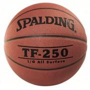 Minge baschet Spalding TF 250