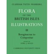 Flora of the British Isles: Borginaceae-Compositae Pt. 3 by A. R. Clapham