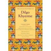 The Collected Works of Dilgo Khyentse: Volume Three by Dilgo Khyentse