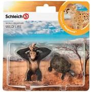 Wild Life Babies - Tortoise e Chimpanzee (Set 5)
