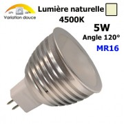 Ampoule spot Led MR16 5W