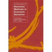Solutions Manual for Recursive Methods in Economic Dynamics by Claudio Irigoyen
